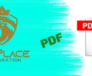 Win Place Corporation PDF